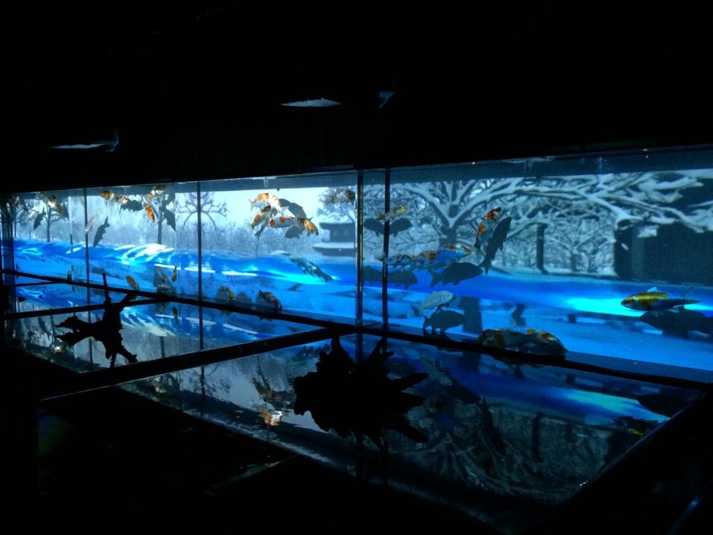 アートアクアリウム展 水中四季絵巻 名古屋 金魚の雅
