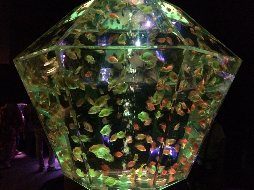 アートアクアリウム展 名古屋 金魚の雅