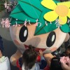 藤枝市、広幡ふれあい祭りに行ってきました。