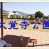 焼津市の広くておすすめの公園!大覚寺公園でまったり!