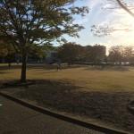 焼津市の清見田公園で遊んできました。