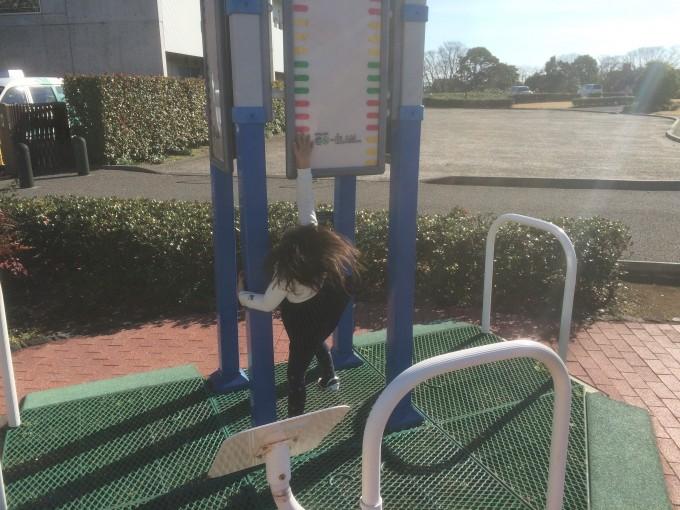 大覚寺公園の健康遊具コーナー