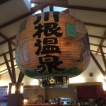 SLが見える温泉が素敵過ぎる!静岡県の川根温泉に行って来た!
